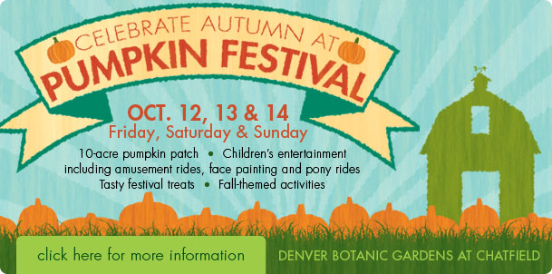 Denver botanic garden at chatfield pumpkin festival oct 12 - Botanic gardens pumpkin festival ...
